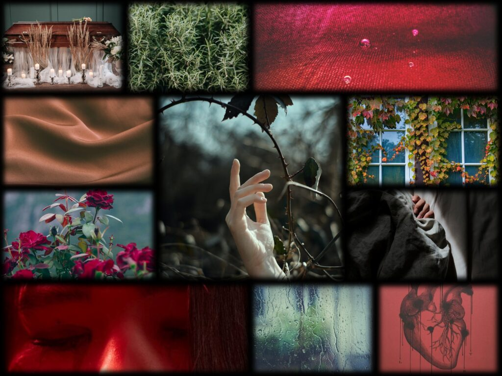 A collage of photographs as follows: a wooden coffin, bundles of rosemary, watter droplets against red fabric, someone's hand under a sheet, organge silk, ivy vines growing over a window, a bush of roses, a drawing of an anatomical heart, raindrops against glass, someone's eyes closed, and a hand reaching up through thorned branches.